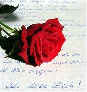 surat cinta untuk umiy